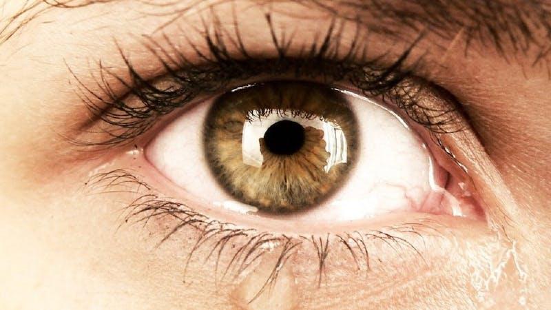 Selv når vi føler at det er noe feil med oss, ser Gud oss inn i øynene