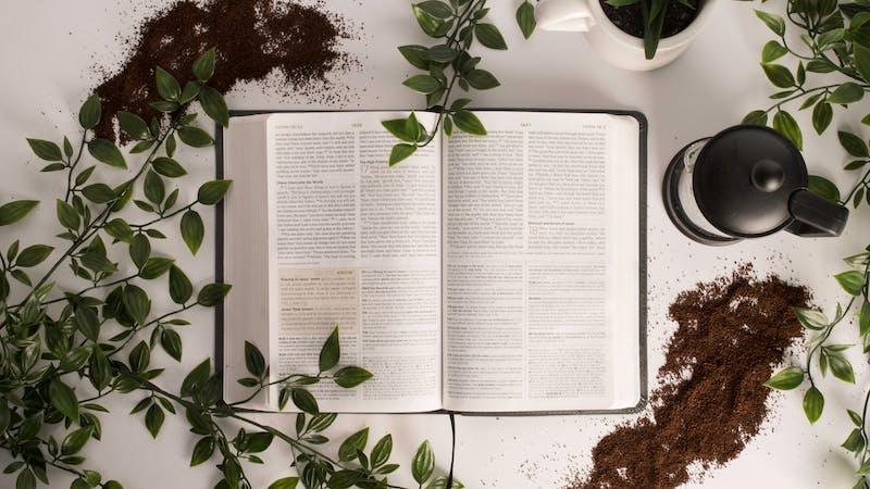 7 grunner til at bibelen er troverdig