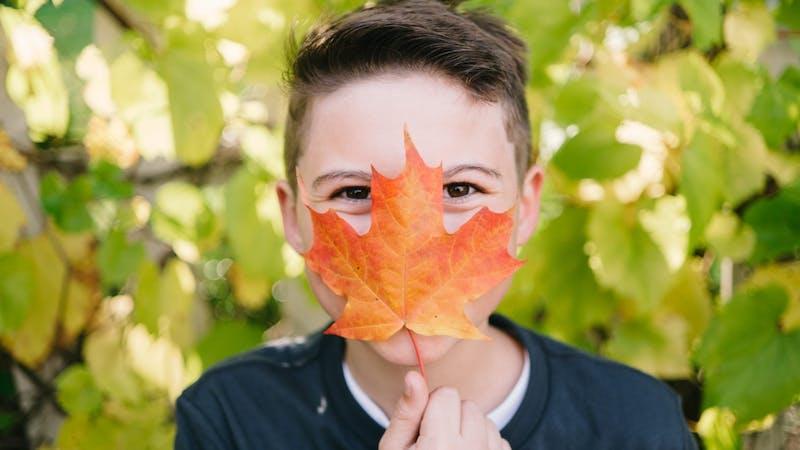 Ta det med ro, høsten er faktisk ikke så ille