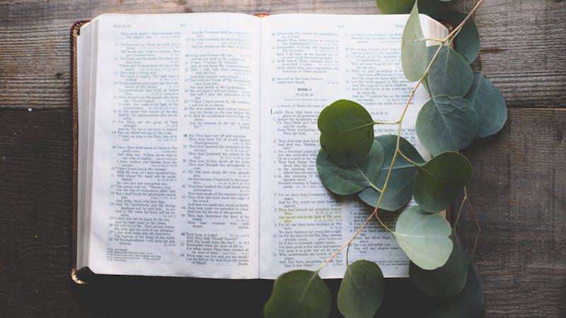 10 bibelvers om frimodighet