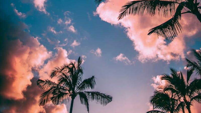 Lyden av sommerferie