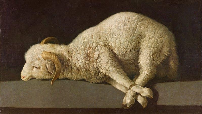 Påskelammet som ble slaktet er et tydelig forbilde på Jesus