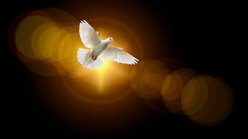 16 bibelvers om Den hellige ånd