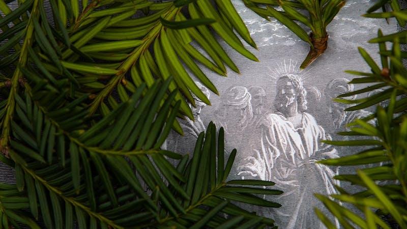 Fordi vi tilhører Jesus har vi et håp som stikker dypere enn omstendigheter